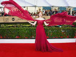 Red Carpet Rundown: SAG Awards 2017