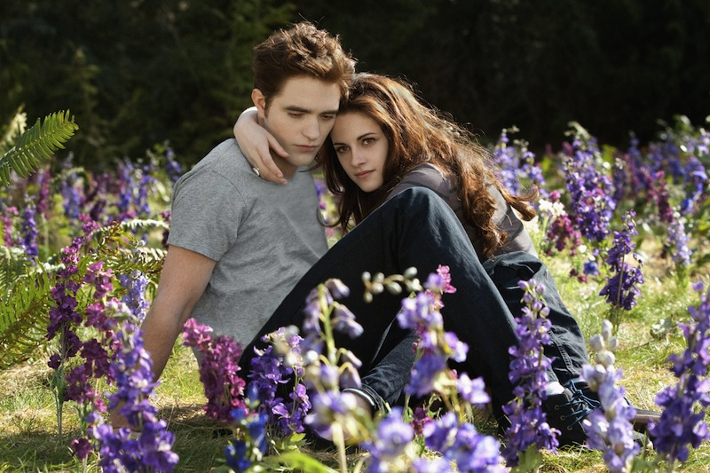 Twilight: Breaking Dawn 2: The Prep